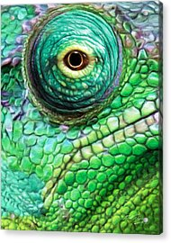 Chameleon Acrylic Print by Bill Fleming