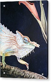 Chameleon Acrylic Print by Irina Sztukowski