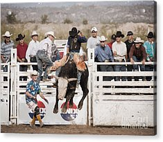 Acrylic Print featuring the photograph Champion Bull Rider by Marianne Jensen