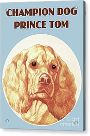 Champion Dog Prince Tom Acrylic Print