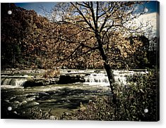 Changes Blowing In Acrylic Print by Melissa  Riggs
