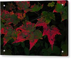 Changing Color Acrylic Print by JAMART Photography