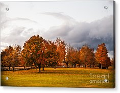Changing  Acrylic Print by Sue OConnor