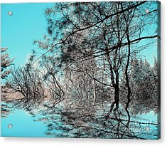 Acrylic Print featuring the photograph Chaos  by Elfriede Fulda