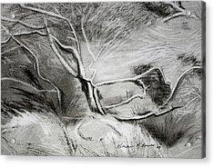 Charcoal Tree Acrylic Print