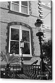 Charleston French Quarter Architecture - Window Street Lanterns Gothic French Black White Art Deco  Acrylic Print by Kathy Fornal
