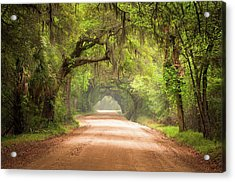 Charleston Sc Edisto Island Dirt Road - The Deep South Acrylic Print