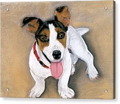 Acrylic Print featuring the pastel Charley by Jan Amiss