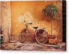 Charming Lucca Acrylic Print