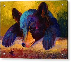 Chasing Bugs - Black Bear Cub Acrylic Print by Marion Rose