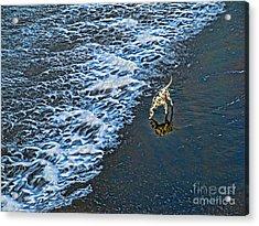 Chasing Waves Acrylic Print