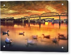 Chattanooga Sunset With Ducks Acrylic Print