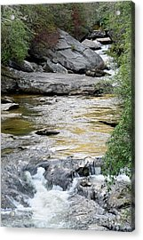 Chattooga River In Sc Acrylic Print by Bruce Gourley