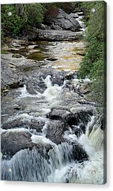 Chattooga River In South Carolina Acrylic Print by Bruce Gourley