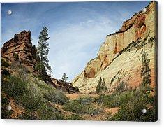 Checkerboard Mesa Acrylic Print