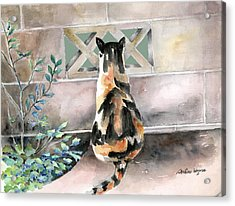 Checking Out The Neighbors Backyard Acrylic Print by Arline Wagner