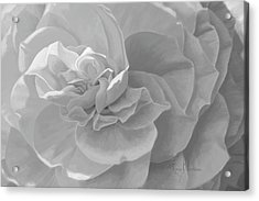 Cheerful - Black And White Acrylic Print by Lucie Bilodeau