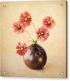 Cheerful Daisies Acrylic Print