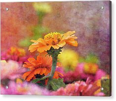 Cheerful Shades Of Optimism 1311 Idp_2 Acrylic Print