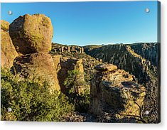 Cheers For Chiricahua Acrylic Print