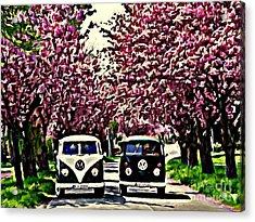 Cheery Blossom Acrylic Print