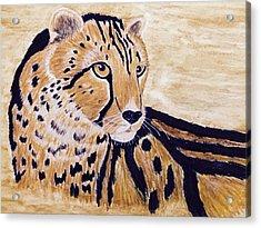 Cheeta Acrylic Print