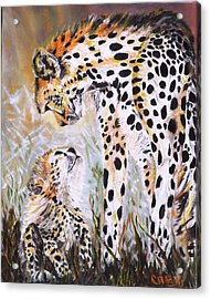 Cheetah And Pup Acrylic Print