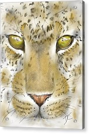 Acrylic Print featuring the digital art Cheetah Face by Darren Cannell