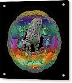 Cheetah Acrylic Print by Julie Grace