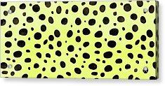 Cheetah Skin Mug Acrylic Print by Edward Fielding