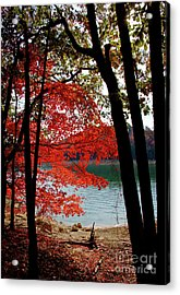 Acrylic Print featuring the photograph Cherokee Lake Color by Douglas Stucky