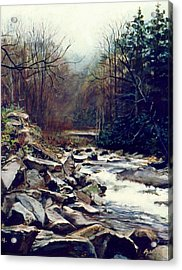 Cherokee Stream Acrylic Print by William  Brody