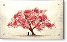 Cherry Blossom And Panda Acrylic Print