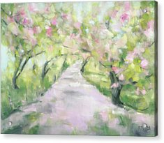 Cherry Blossom Bridle Path Central Park Acrylic Print