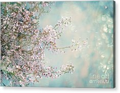 Acrylic Print featuring the photograph Cherry Blossom Dreams by Linda Lees