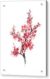 Cherry Blossom Japanese Flowers Poster Acrylic Print