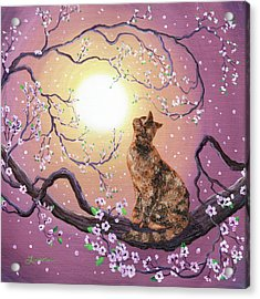 Cherry Blossom Waltz  Acrylic Print by Laura Iverson