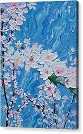 Cherry Blossoms 1 Acrylic Print by Timothy Clayton