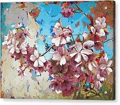 Cherry Blossoms #3 Acrylic Print