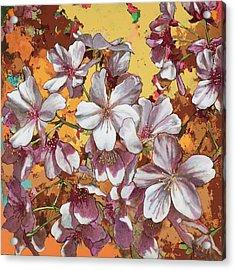 Cherry Blossoms #4 Acrylic Print
