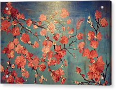 Cherry Blossoms Acrylic Print by Anza Arain