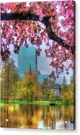 Cherry Blossoms Over Boston Acrylic Print by Joann Vitali