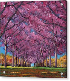 Cherry Lane Acrylic Print