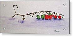 Cherry Tomatoe Vine Acrylic Print