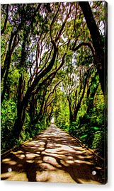 Cherry Tree Hill Acrylic Print