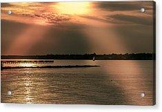 Chesapeake Gold Acrylic Print