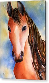 Chestnut Horse Acrylic Print