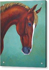 Chestnut Horse Acrylic Print by Oksana Zotkina
