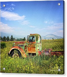 Acrylic Print featuring the mixed media Chevy In A Field by Terry Rowe