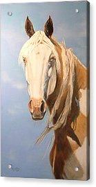 Cheyenne Whisper Acrylic Print